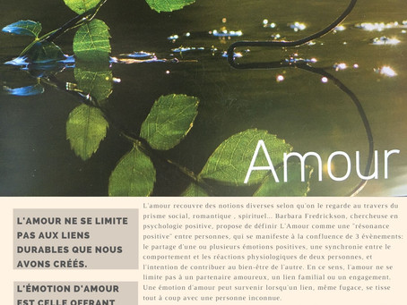 Force N°14 : L'AMOUR