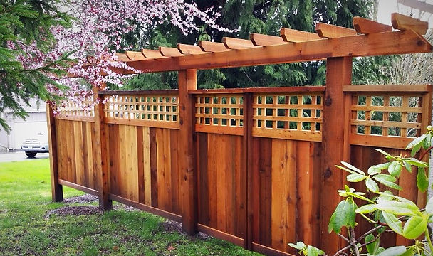 Custom ornamental gate and fene