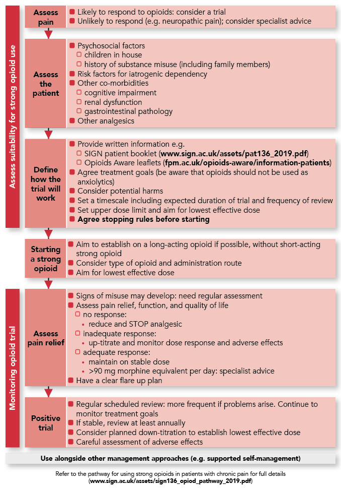 opioid use pathway.png