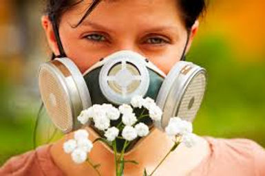 Sección de Alergias en el News de salud
