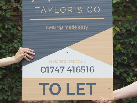 Exciting News! Taylor & Co Are Launching October 2020