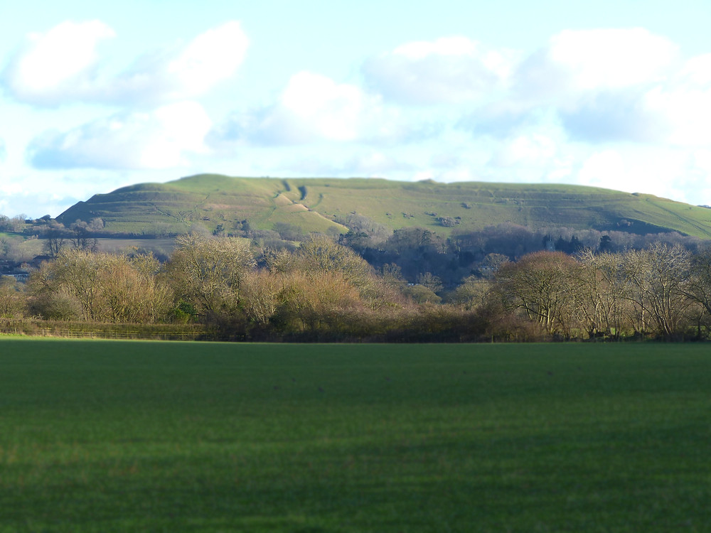 Hambledon Hill, Dorset Photo by HCF