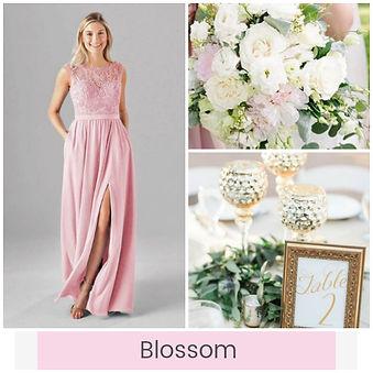 blossom-color-board.jpg
