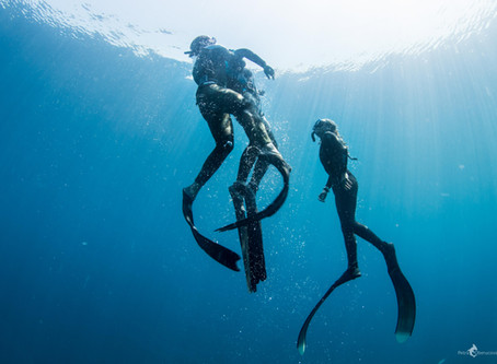 Safety in Freediving