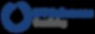 MT Solomons Freediving Logo