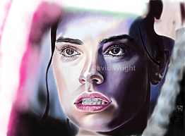 "Rey 3 Canvas Print 18"" x 24"""