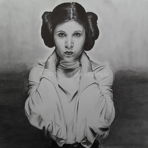 "The Princess Leia Organa of Alderaan Canvas (18"" x 24"")"