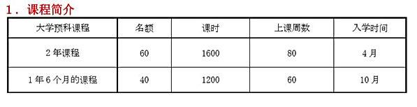 1コース概要(中国語).JPG