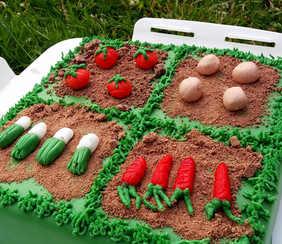 Vegetable patch cake