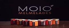 Logo_Moio.jpg