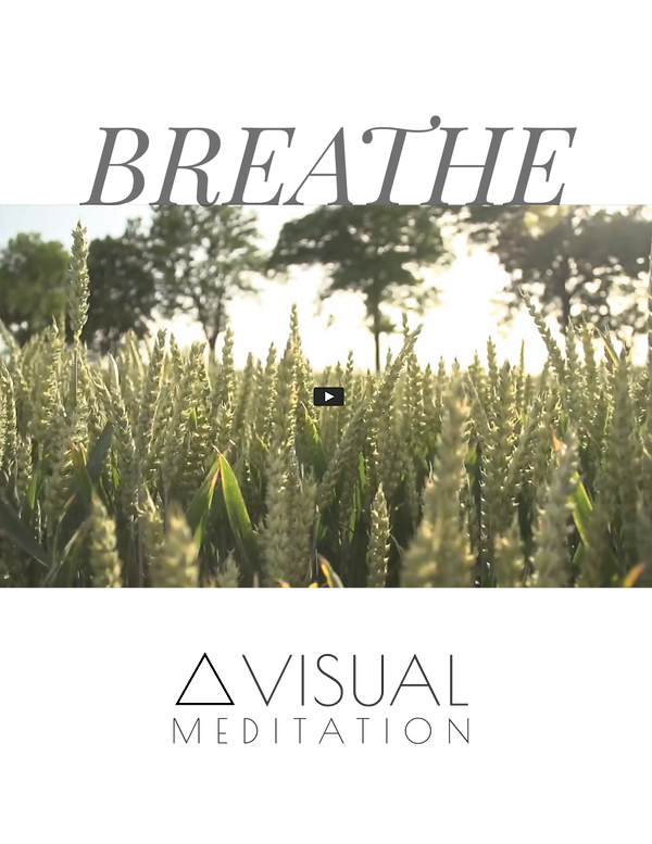 BREATHEVIDEOgraphic.png