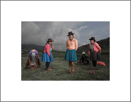 POTATO FARMERS 2