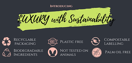 LUXURY with Sustainability (2).png