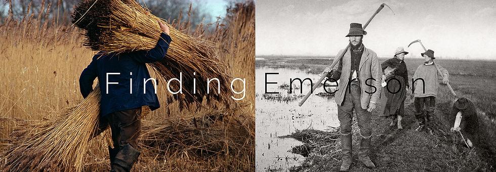 Finding Emerson.jpg