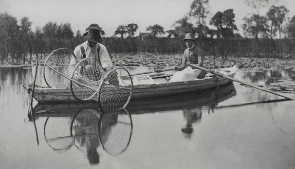 P. H. Emerson - Life and Landscape on the Norfolk Broads