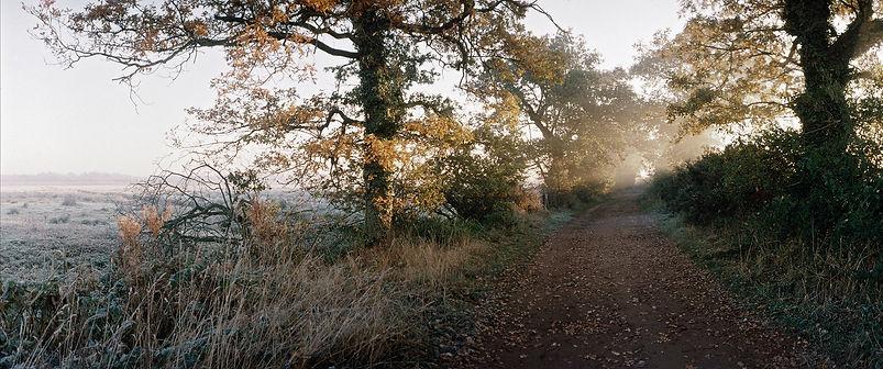 norfolk, marshland, marsh, photography, fine art photography, frost, Mark Cator