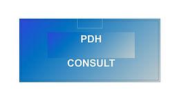 PDH Consult branding.jpg