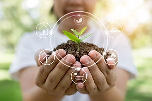 plant-tree-innovation-save-world_28629-1