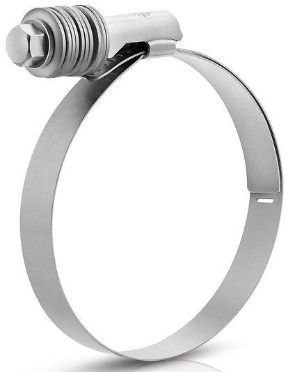 Constant Tension Worm Drive Clamp(Liner)
