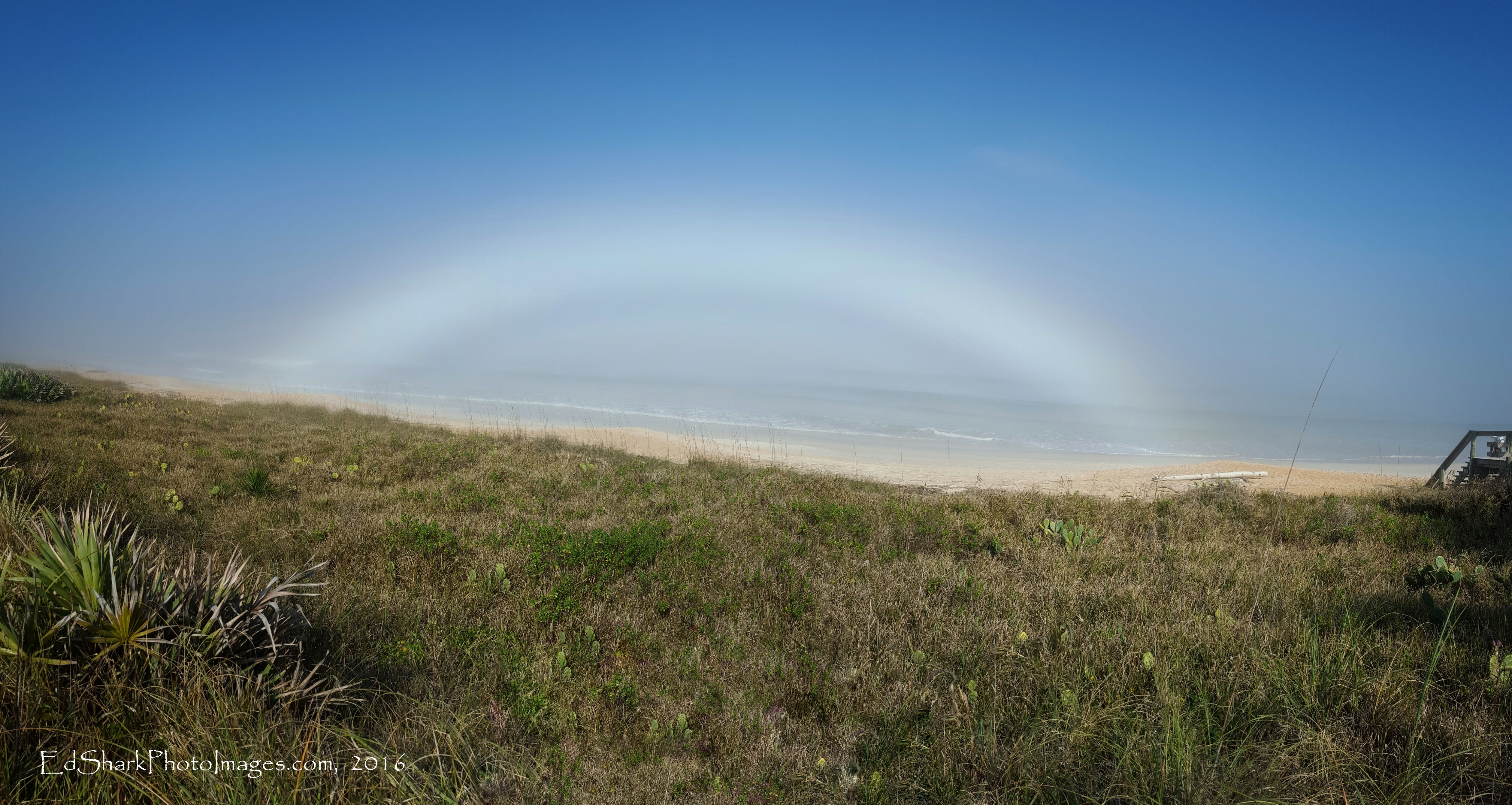 Fogbow Complete Flagler Beach 02.20.2016