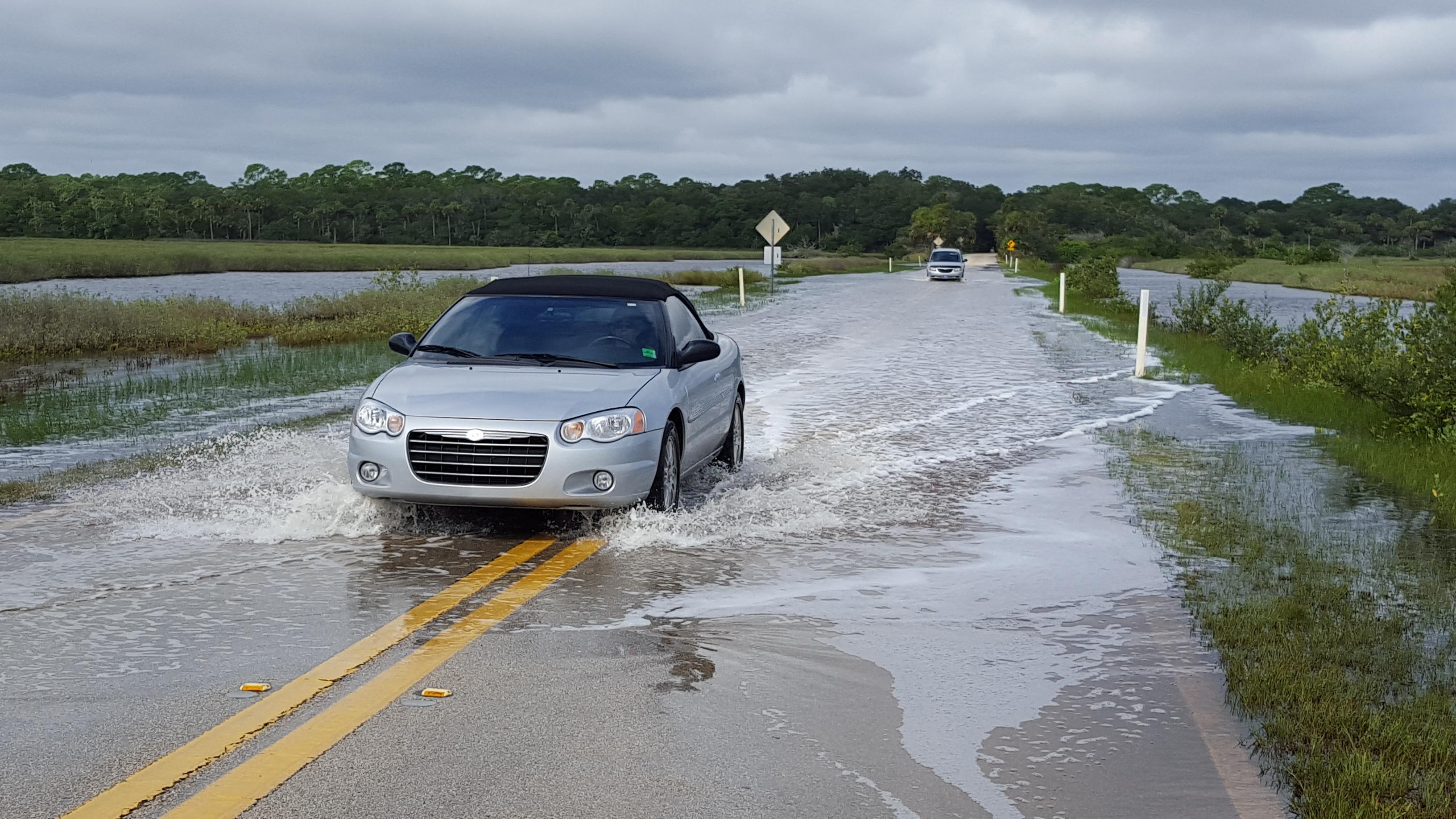 Flooding Nuisance Tomoka SP 10.06.2015