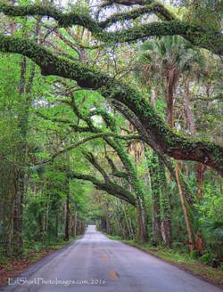 Walter Boardman Road