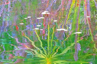 "Ed Siarkowicz Impressionistic Water Reflections ""The Spires of Malacompra, Hammock, Palm Coast, Florida"
