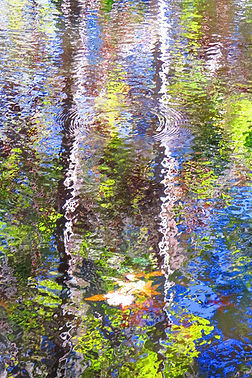 """Ed Siarkowicz Impressionistic Water Reflections """"Shimmering Adventure, Bull Creek, St. Johns Park, Florida"""