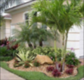 landscape renovation website pic_edited.jpg