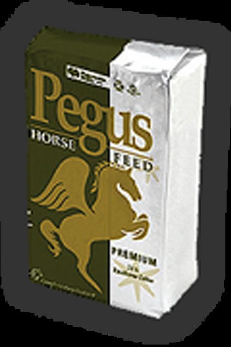 PEGUS RACEHORSE CUBE