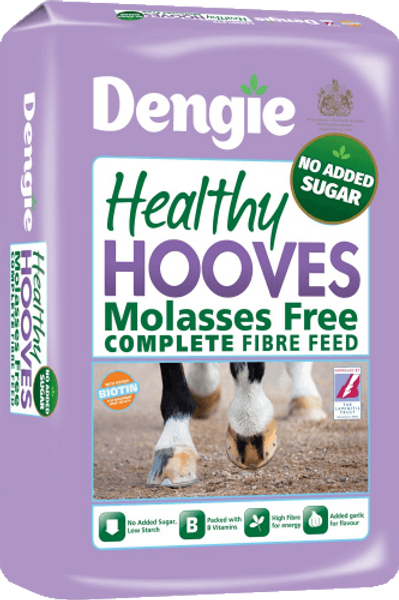 Healthy Hooves