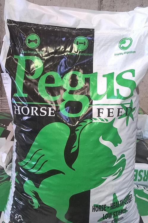 PEGUS HORSE HEALTH CUBE