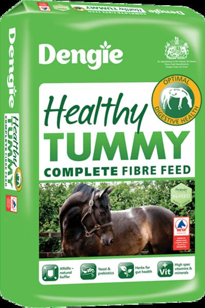 Healthy Tummy