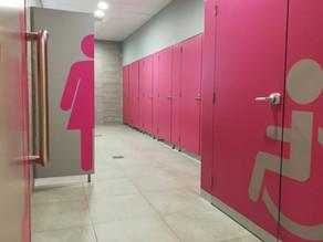 Re-Furbishing the Toilets at Galleria Borromea