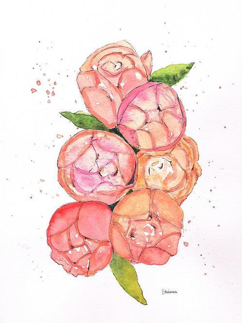 Peachy-Pink Peonies