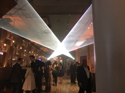 Private Party Special Event Lasers Weddi