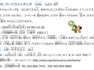 ふゆの バードウォッチング Cafe ひよう:0円