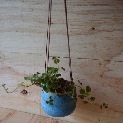 Blue Wavy Hanging Pot
