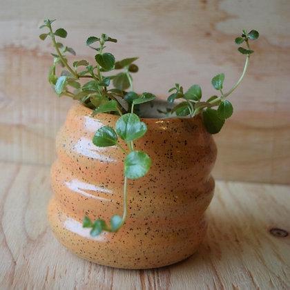 Orange Wavy Pot