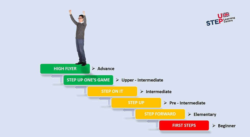 Adult levels - courses.jpg