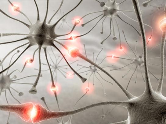 brain-neurons.jpg