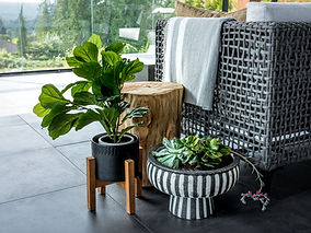 Cropped image of outdoor plant decor, wooden stump, and an outdoor sofa.