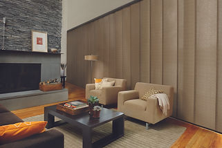 Hunter Douglas skyline in a living room with two light, brown chairs and fireplace.