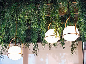 Cropped image of three spherical light fixtures and plants hanging from the ceiling.