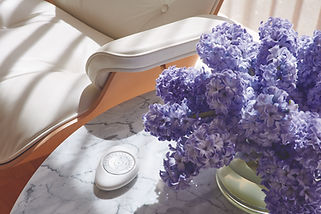 Cropped image of a Hunter Douglas pebble remote besides purple flowers.