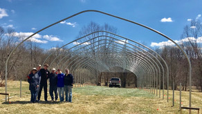 An old-fashioned barn raising—high tunnel style.
