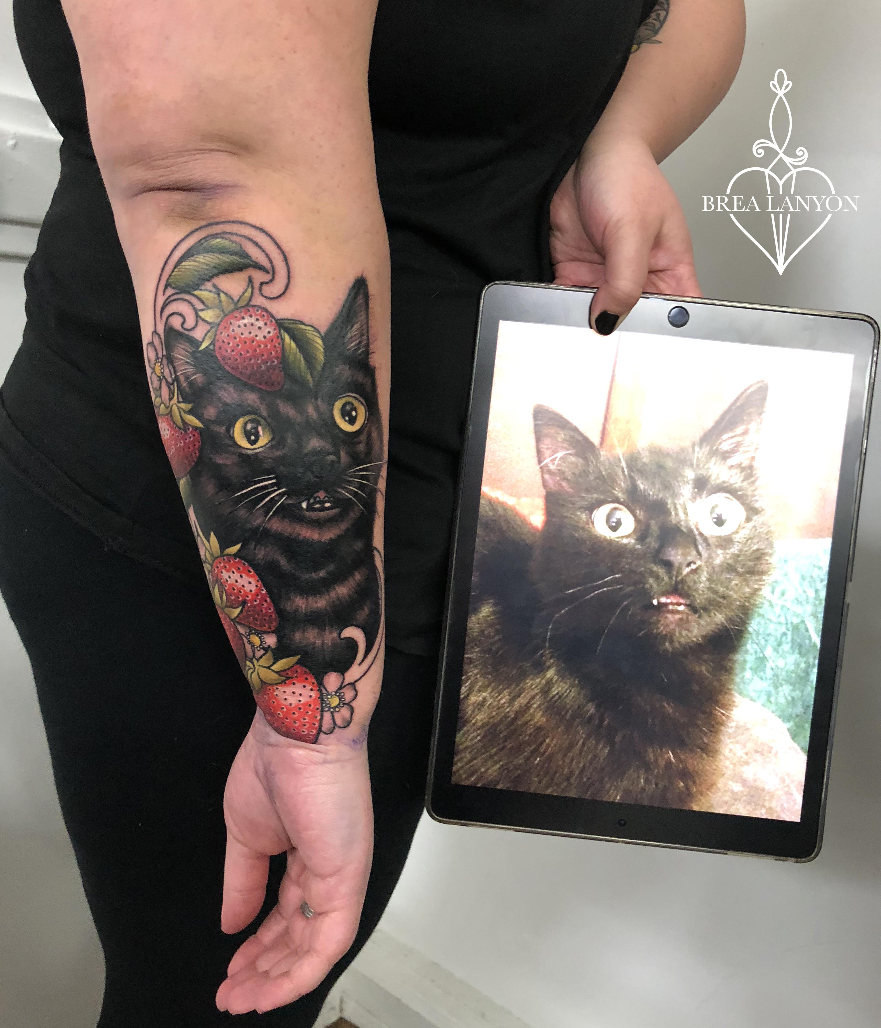 beth cat 5 - Copy - Copy