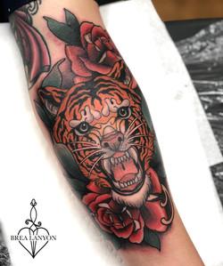 jose tiger 4