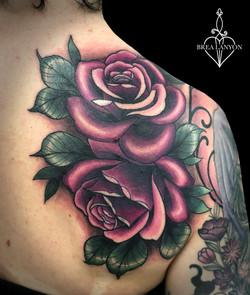 jess rose coverup