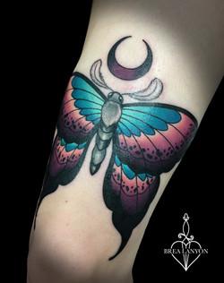 kaitlin moth 2